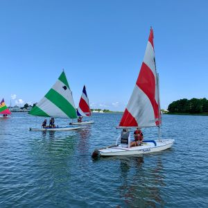 4-sunfish-sailing-around.jpg