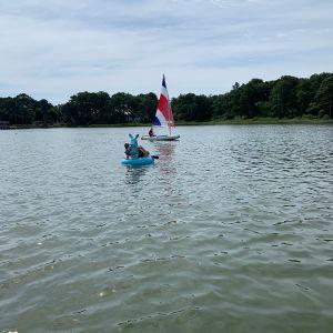 sailt-boat-and-bunny-float.jpg